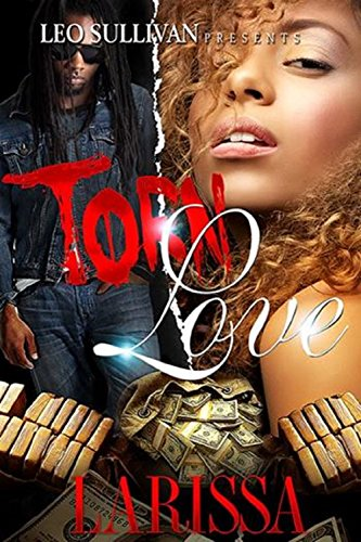 Torn Love by Larissa