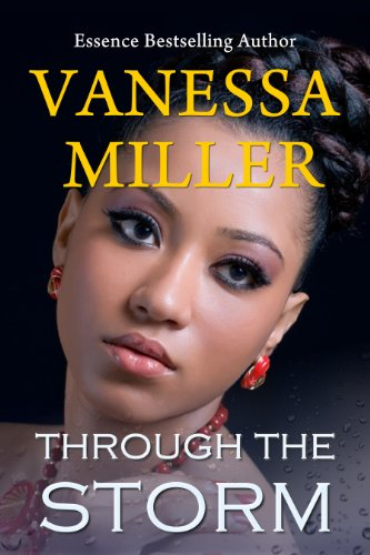 Through The Storm (Rain Series Book 5) by Vanessa Miller