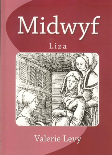 Midwife : Liza by Valerie Levy