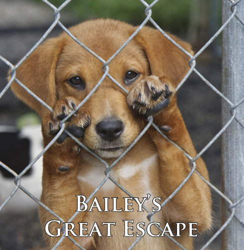 Bailey's Great Escape (A Cute Dog Story) by Bapps Media