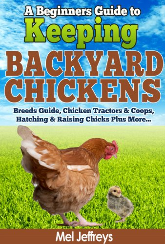 A Beginners Guide to Keeping Backyard Chickens – Breeds Guide, Chicken Tractors & Coops, Hatching & Raising Chicks… by Mel Jeffreys