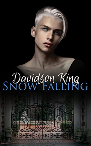 Snow Falling (Haven Hart Book 1) by Davidson King and Five Star Designs
