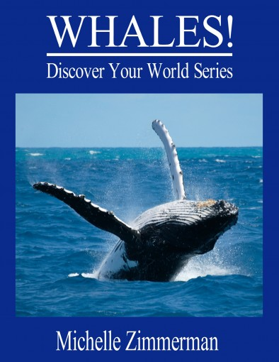 WHALES! (Discover Your World Series) by Michelle Zimmerman