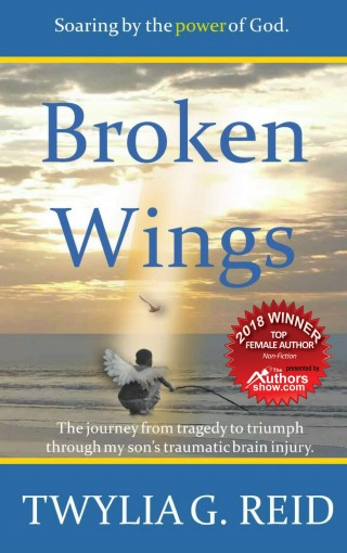 Broken Wings: The journey from tragedy to triumph through my son's traumatic brain injury. by Twylia G. Reid
