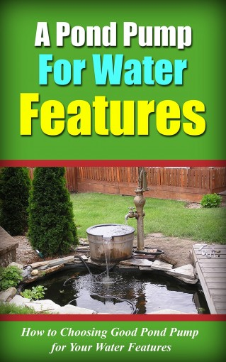 A Pond Pump for Water Features: How to Choosing Good Pond Pump for Your Water Features by Lorena Slater