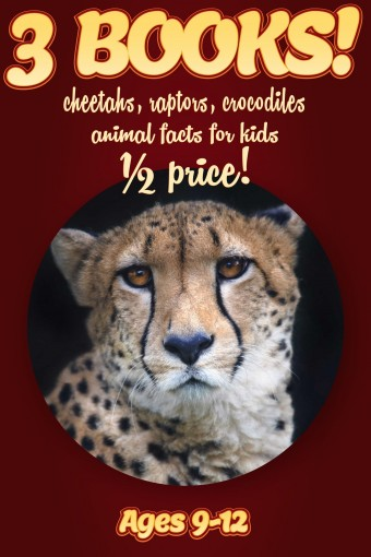1/2 Price: 3 Bundled Books: Cheetah, Raptor, Crocodile & Alligator Facts For Kids Ages 9-12: Amazing Animal Facts With Large Size Pictures: Clouducated Red Series Nonfiction For Kids by Cindy Bowdoin