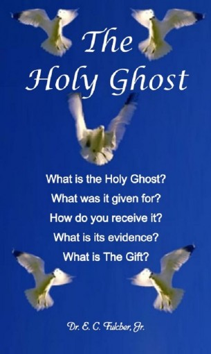 What is the Holy Ghost? by Fulcher Jr, Dr E C