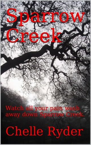 Sparrow Creek: Watch all your pain wash away down Sparrow Creek. by Chelle Ryder