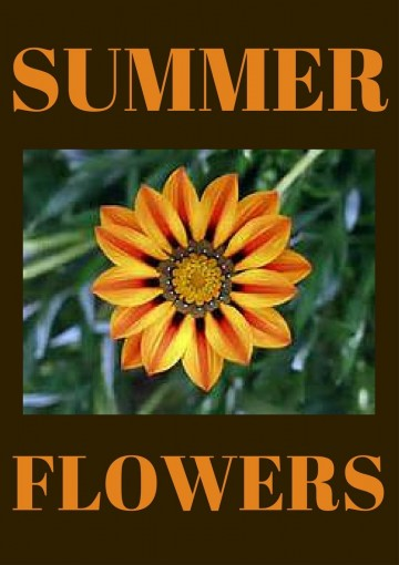 FLOWERS: SUMMERTIME FLOWERS: FLOWERS (Flowers that give great color all summer long and shade loveing summer flowers.) by Robert Edwards