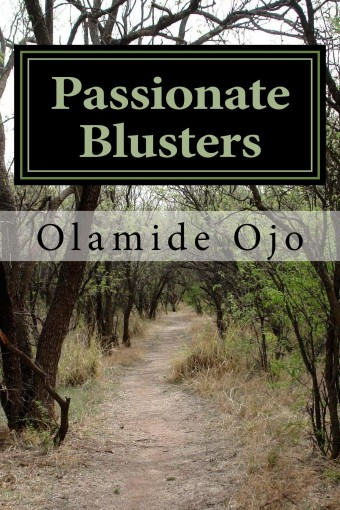 Passionate Blusters by Olamide Ojo