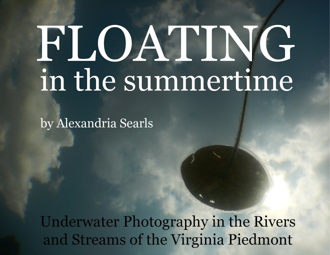 Floating in the Summertime: Underwater Photography in the Rivers and Streams of the Virginia Piedmont by Alexandria Searls