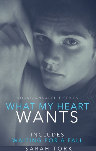 What My Heart Wants (Y.A Series Book 3) by Sarah Tork