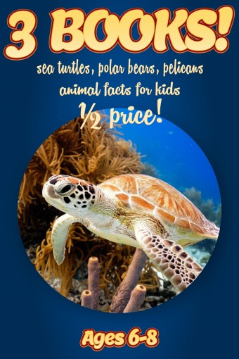 1/2 Price: 3 Bundled Books: Facts About Sea Turtles, Polar Bears, & Pelicans For Kids Ages 6-8: Amazing Animal Facts With Large Size Pictures: Clouducated Blue Series Nonfiction For Kids by Cindy Bowdoin