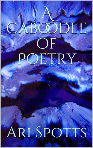 A Caboodle of Poetry by Ari Spotts