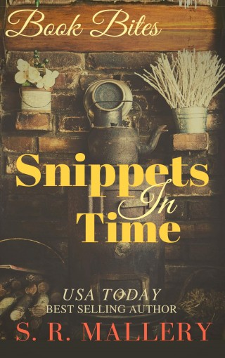 Snippets In Time by S. R. Mallery