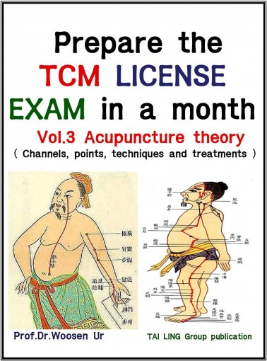 Prepare the TCM License exam in a month Vol. 3: Acupuncture theory – channels, points, techniques and treatments(California, NCCAOM, Canadian exam) (TCM board exam) by Woosen Ur
