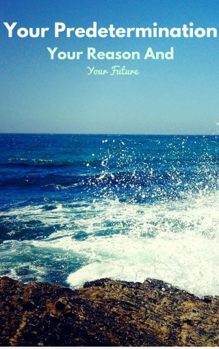 Your Predetermination, Your Reason And Your Future: Finding Your Purpose by Michael Voutier
