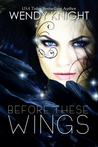 Before These Wings (Wings  Book 1) by Wendy  Knight
