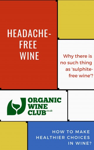 Headache-Free Wine: How To Make Healthier Choices In Wine? by Dmytro Safonov DipWSET, OrganicWineClub.co.uk