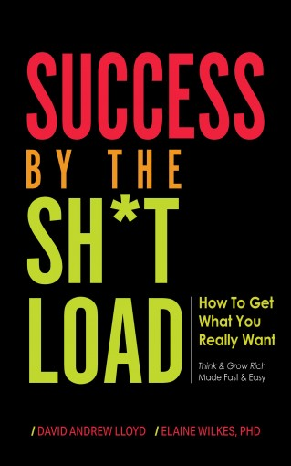 Success By the Sh*tload: How To Get What You Really Want by David Lloyd