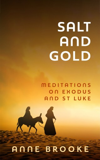 Salt and Gold: Meditations on Exodus and St Luke by Anne Brooke