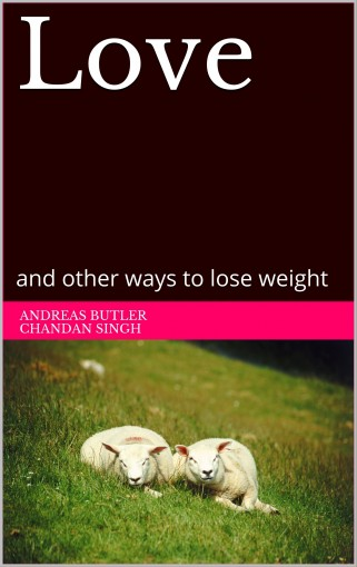 Love: and other ways to lose weight by Andreas Butler