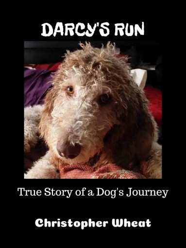 Darcy's Run: True Story of a Dog's Journey (Tales from N. Park Ave. Book 1) by Christopher Wheat