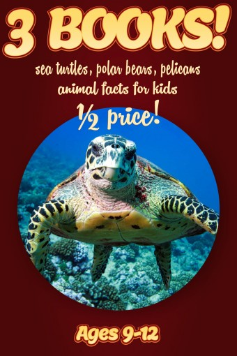 1/2 Price: 3 Bundled Books: Sea Turtle, Polar Bear, & Pelican Facts For Kids Ages 9-12: Amazing Animal Facts With Large Size Pictures: Clouducated Red Series Nonfiction For Kids by Cindy Bowdoin