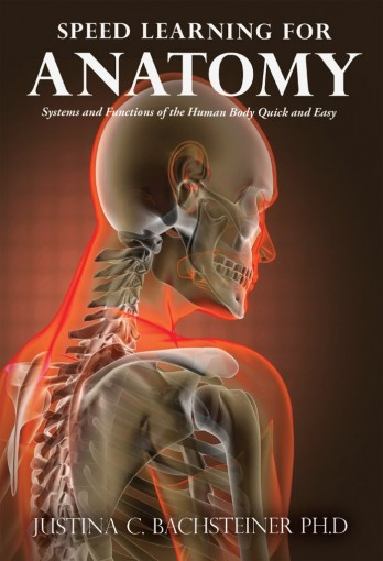 Speed Learning for Anatomy: Systems and Functions of the Human Body Quick and Easy by Bachsteiner Ph.D, Justina C.