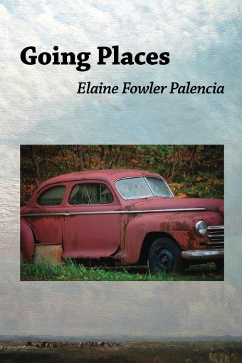 Going Places by Elaine Fowler Palencia