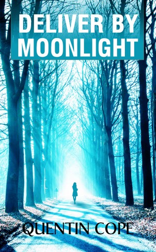 Deliver by Moonlight by Quentin Cope