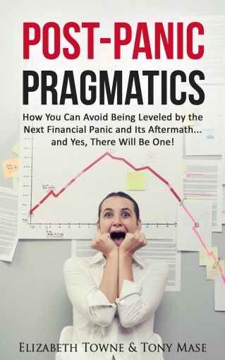 Post-Panic Pragmatics: How You Can Avoid Being Leveled by the Next Financial Panic and Its Aftermath… and Yes, There Will Be One! by Elizabeth Towne