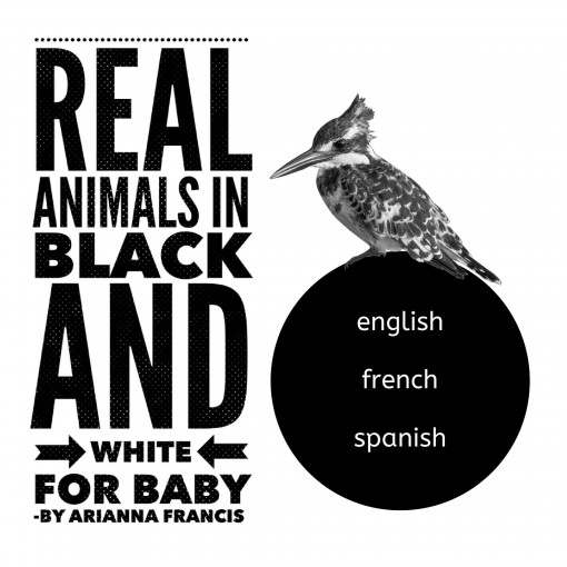 REAL Animals in Black & White for Baby: High contrast photos for eye and brain development with words in English, French and Spanish. by Arianna Francis