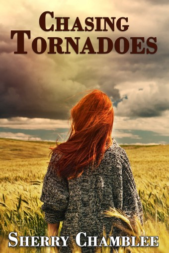 Chasing Tornadoes by Sherry Chamblee