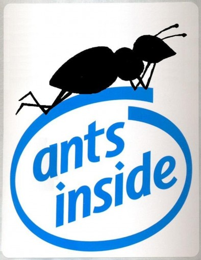 Ants inside: the truth about computers by Marco Bonafede