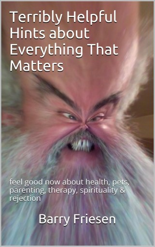 Terribly Helpful Hints about Everything That Matters: feel good now about health, pets, parenting, therapy, spirituality & rejection by Barry Friesen